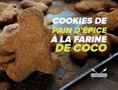 Cookies de pain d'épice à la farine de coco