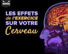 Les effets de l'exercice sur votre cerveau