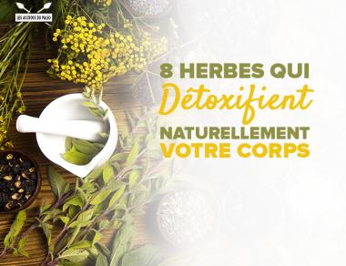 8 herbes pour détoxifier naturellement le corps